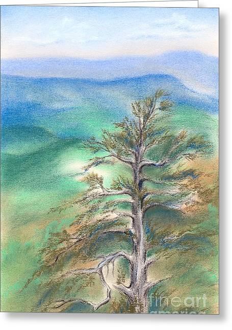 Blue Ridge Pine Greeting Card
