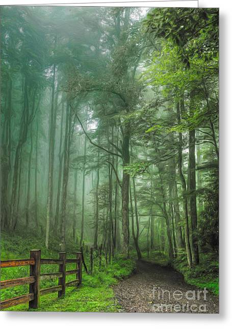 Blue Ridge - Trees In Fog Country Road II Greeting Card