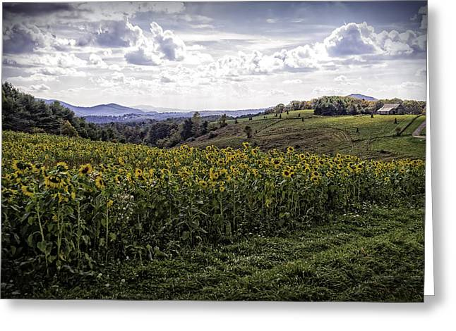 Blue Ridge View Greeting Card