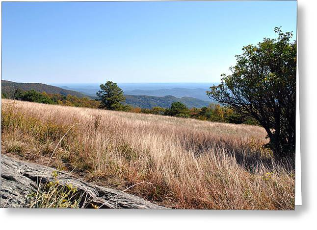 Greeting Card featuring the photograph Blue Ridge View by Kelly Nowak