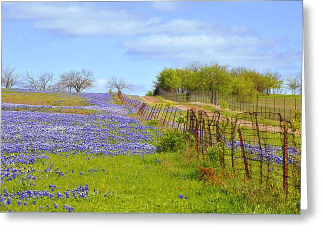 Blue Road Up A Hill Greeting Card by ARTography by Pamela Smale Williams
