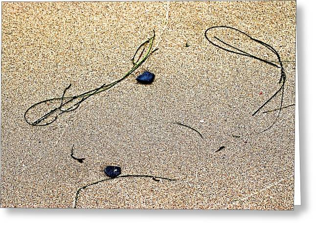 Greeting Card featuring the photograph Blue Rocks And Seagrass by Bob Wall