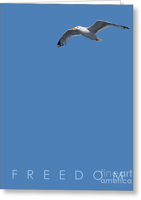 Blue Series 001 Freedom Greeting Card