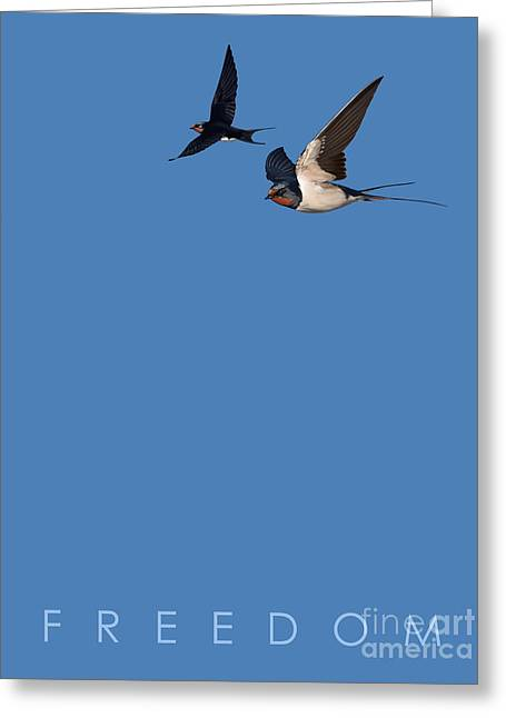 Greeting Card featuring the drawing Blue Series 002 Freedom by Rob Snow