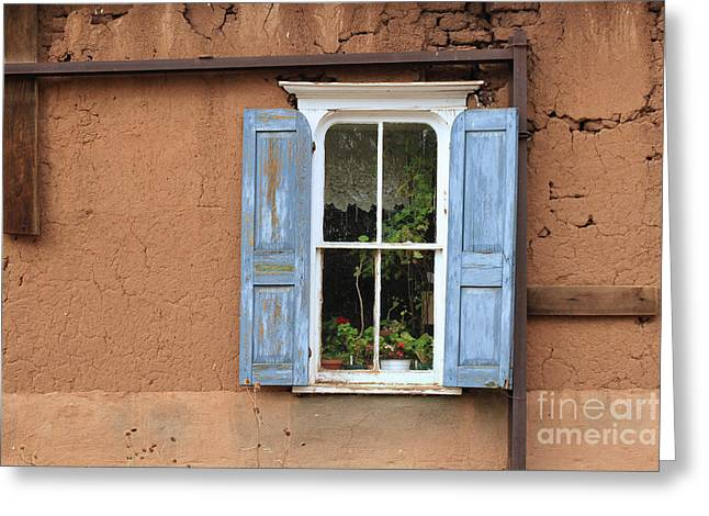 Blue Shutters Greeting Card by Ashley M Conger