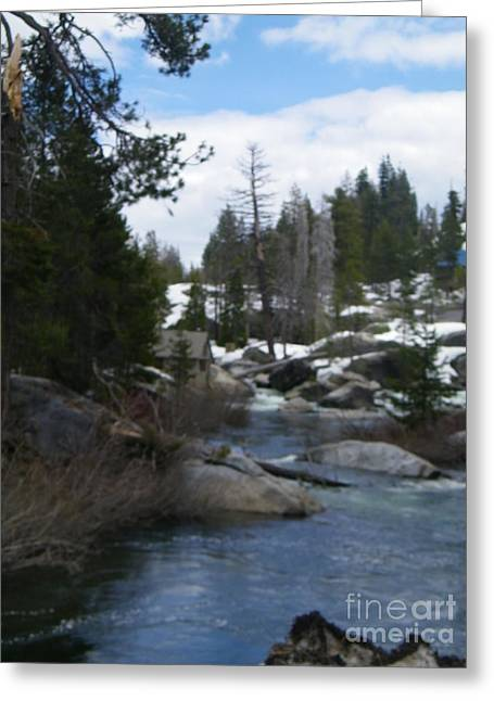 Greeting Card featuring the photograph Blue Skies Of Winter by Bobbee Rickard