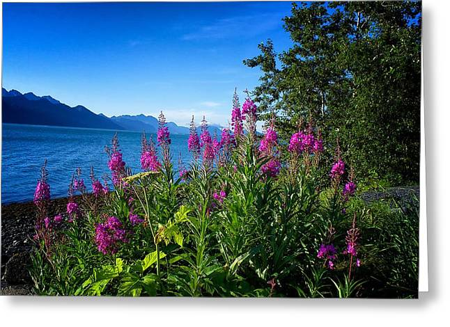 Blue Skies Seward Alaska Greeting Card