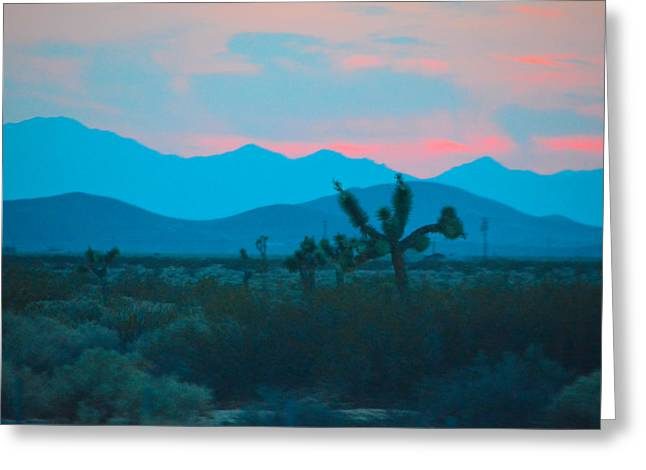 Blue Sky Cacti Sunset Greeting Card by Deprise Brescia