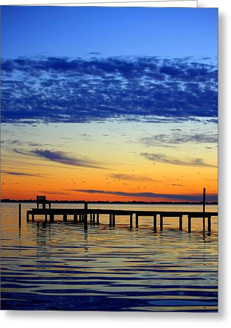 Greeting Card featuring the photograph Blue Sky by Faith Williams