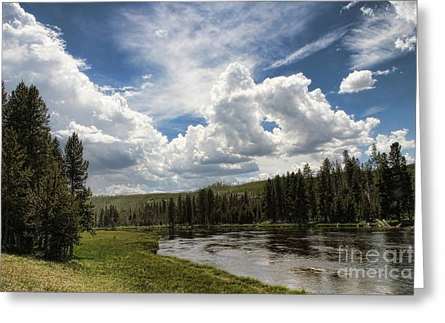 Blue Sky In Yellowstone Greeting Card by Edward R Wisell