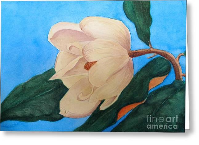 Blue Sky Magnolia Greeting Card by Nancy Kane Chapman