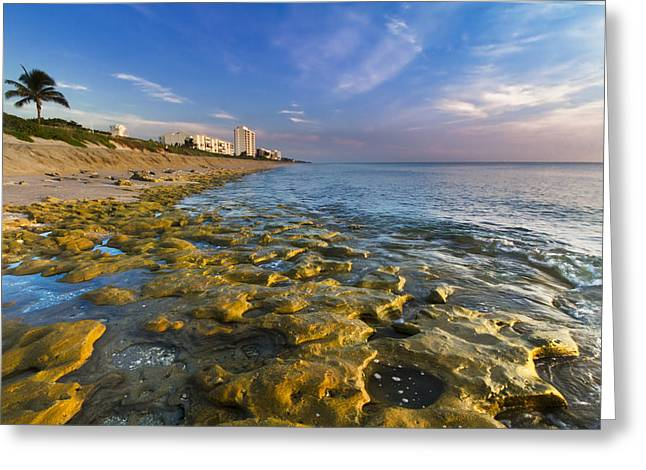 Blue Sky Over Coral Cove Greeting Card by Debra and Dave Vanderlaan