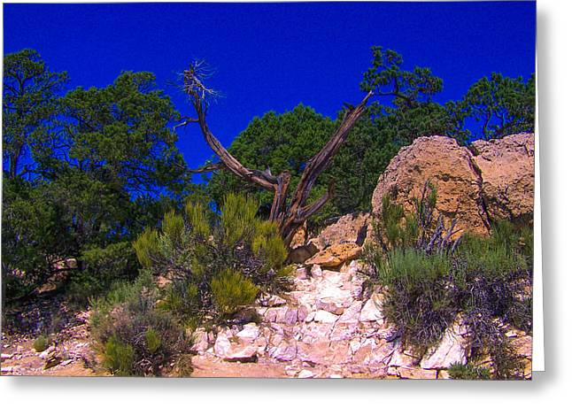 Blue Sky Over The Canyon Greeting Card by Dany Lison