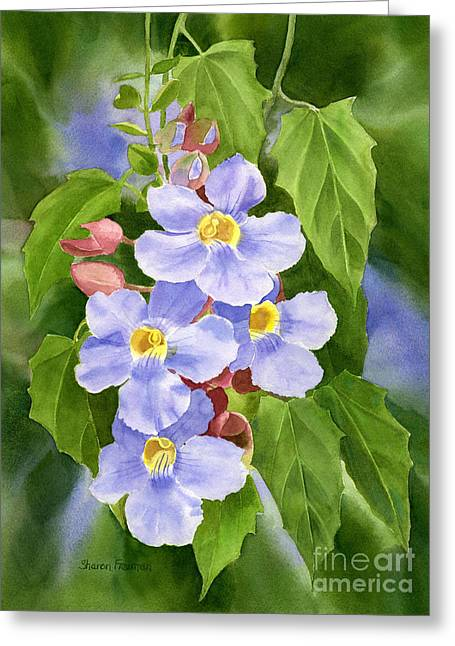 Blue Sky Vine With Background Greeting Card by Sharon Freeman