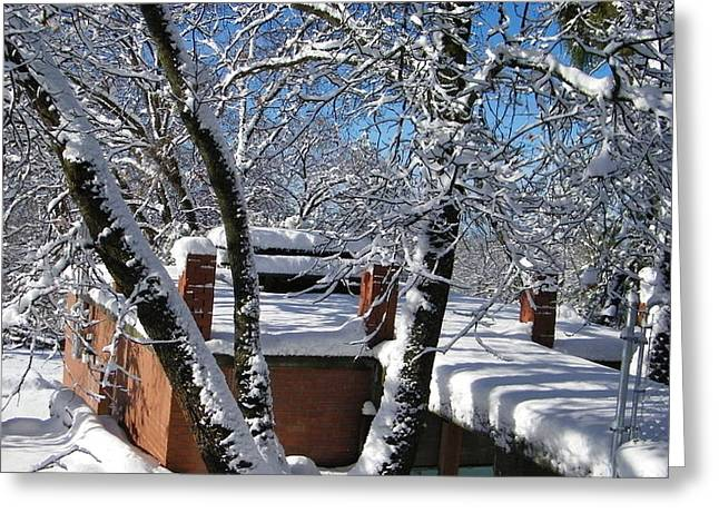 Blue Sky-white Snow Greeting Card