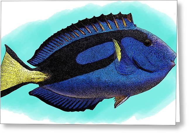 Blue Tang, Illustration Greeting Card