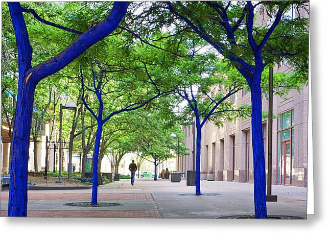 Blue Tree Walkway Greeting Card
