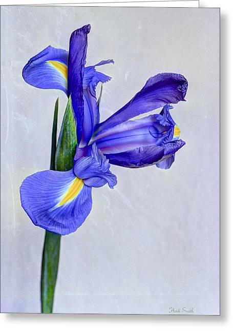 Blue Valentine Greeting Card by Heidi Smith