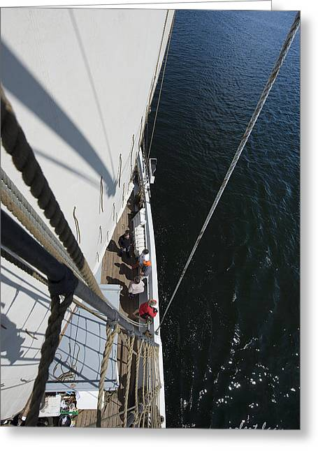 Blue Water - White Sail Greeting Card by Robert Lacy