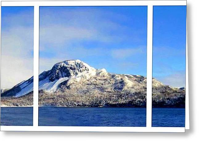 Blue Winter Triptych Greeting Card by Barbara Griffin