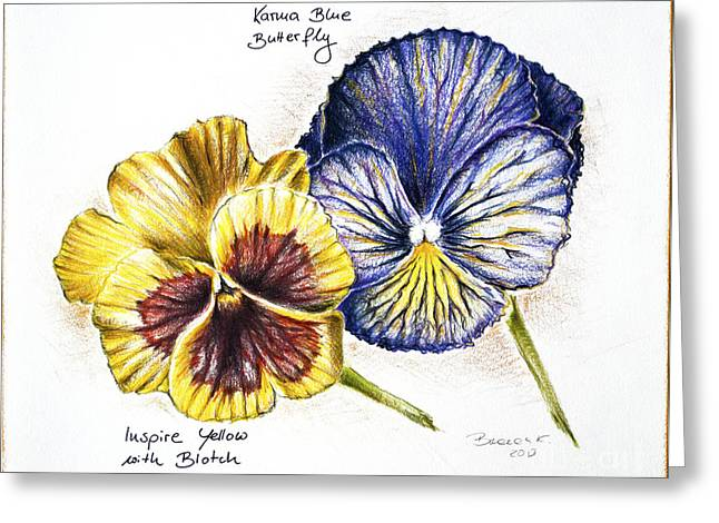 Blue Yellow Pansies Greeting Card