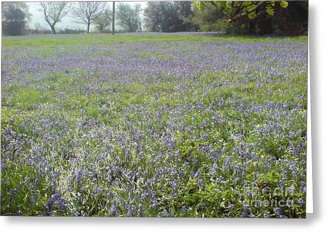Bluebell Fields Greeting Card