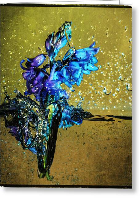 Greeting Card featuring the mixed media Bluebells In Water Splash by Peter v Quenter
