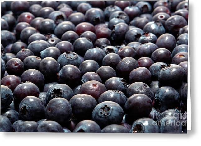 Blueberry Galore Greeting Card