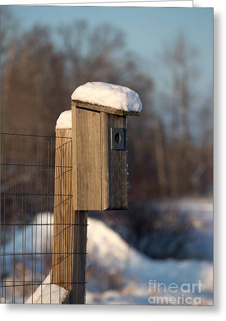 Bluebird House Covered With Snow Greeting Card by Linda Freshwaters Arndt