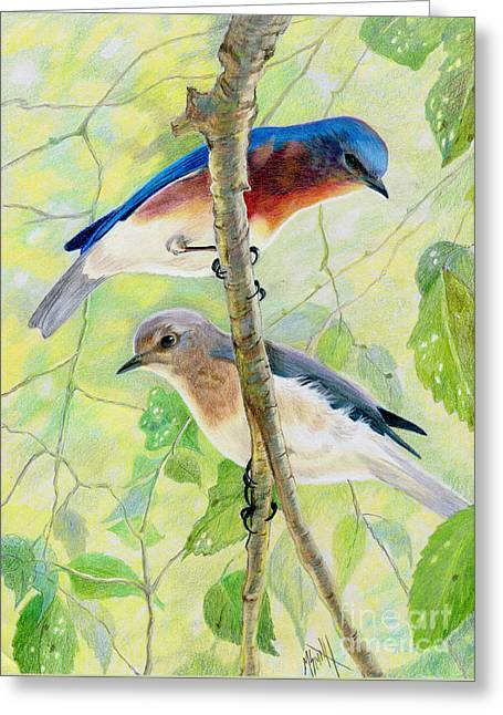 Bluebird Pair Greeting Card by Marilyn Smith