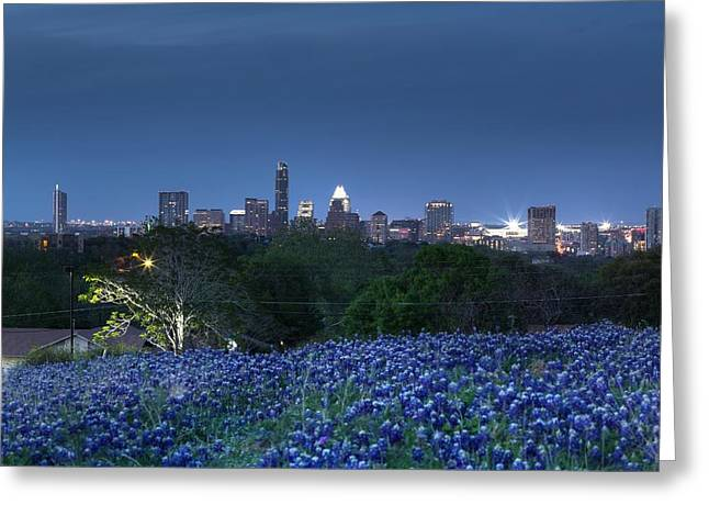 Bluebonnet Twilight Greeting Card