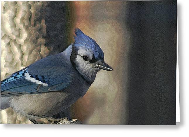 Bluejay Digitally Enhanced Greeting Card by Ernie Echols