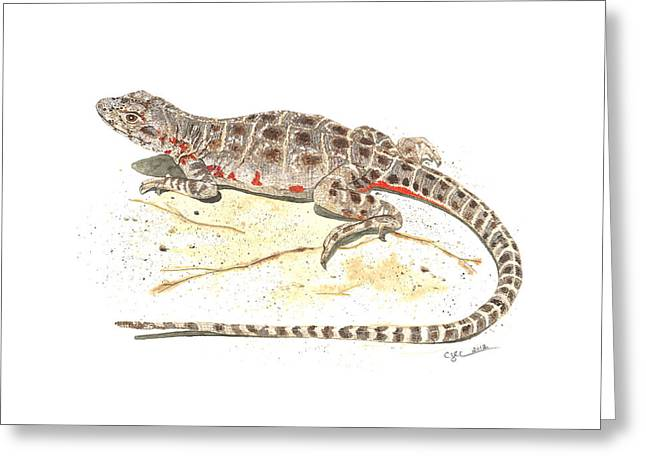 Blunt-nosed Leopard Lizard  Greeting Card