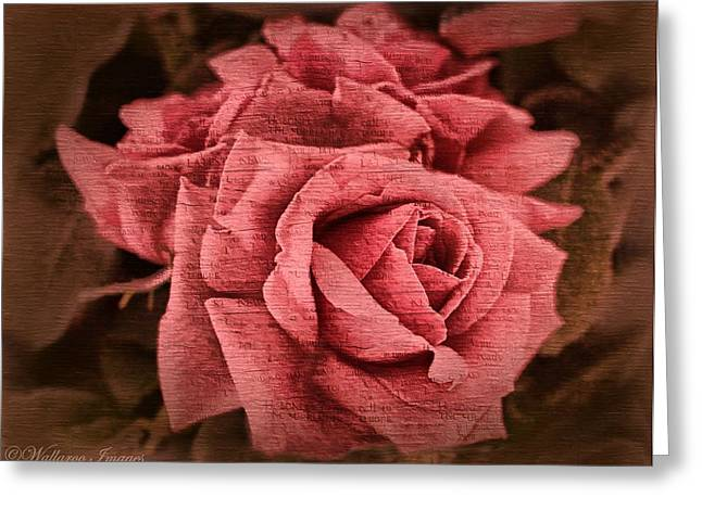 Greeting Card featuring the photograph Blush by Wallaroo Images