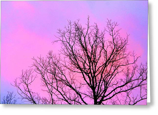 Greeting Card featuring the photograph Blushing Sky by Candice Trimble