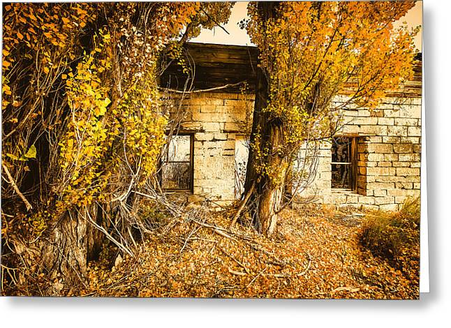 Boarding House Ruins Greeting Card by John Williams