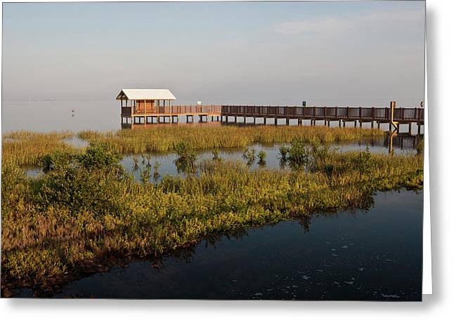 Boardwalk At South Padre Island Birding Greeting Card by Larry Ditto