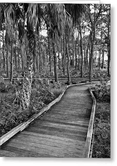 Boardwalk In Black And White 2 Greeting Card