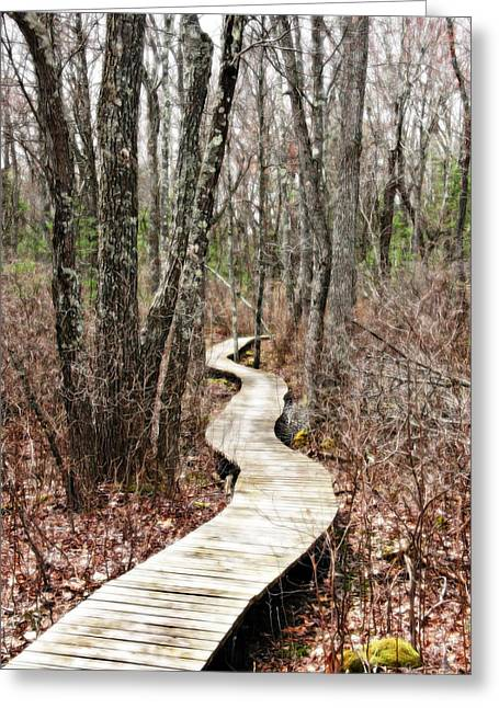 Boardwalk Through The Woods Greeting Card