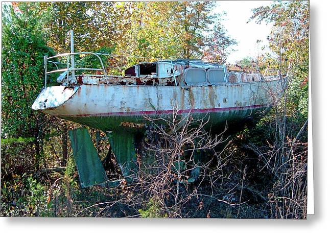 Greeting Card featuring the photograph Boat In Dry Dock Forest by Larry Bishop
