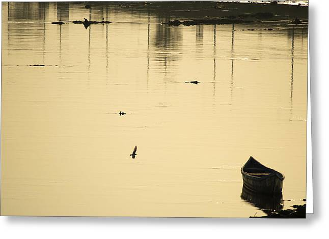 Boat In The Water Greeting Card by Rajiv Chopra
