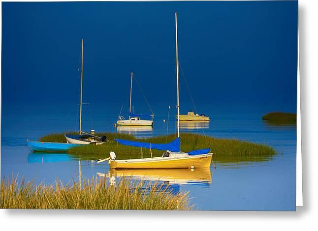 Boat Meadow Greeting Card by Dapixara Artwork
