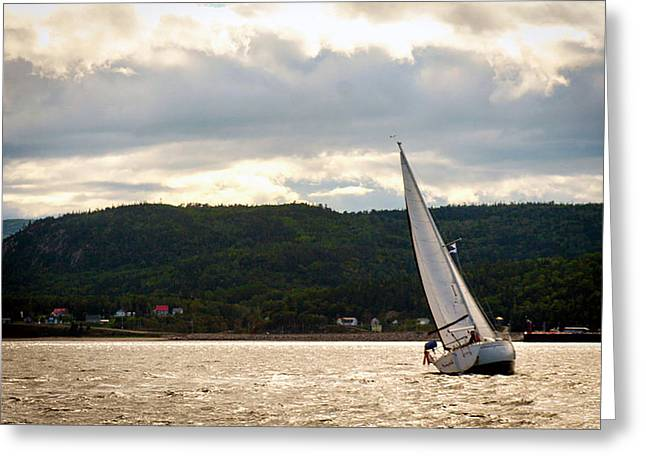 Boating In Tadoussac Greeting Card