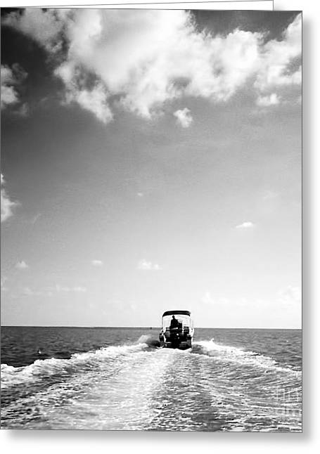 Boating Trip Greeting Card by Anita Lewis