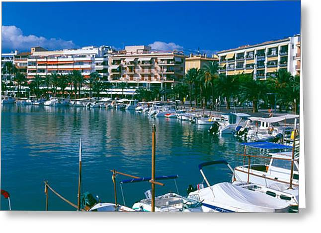 Boats At A Harbor, Majorca, Balearic Greeting Card by Panoramic Images
