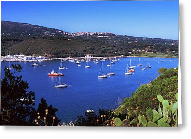 Boats At A Harbor, Porto Azzurro Greeting Card by Panoramic Images