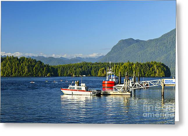 Boats At Dock In Tofino Greeting Card