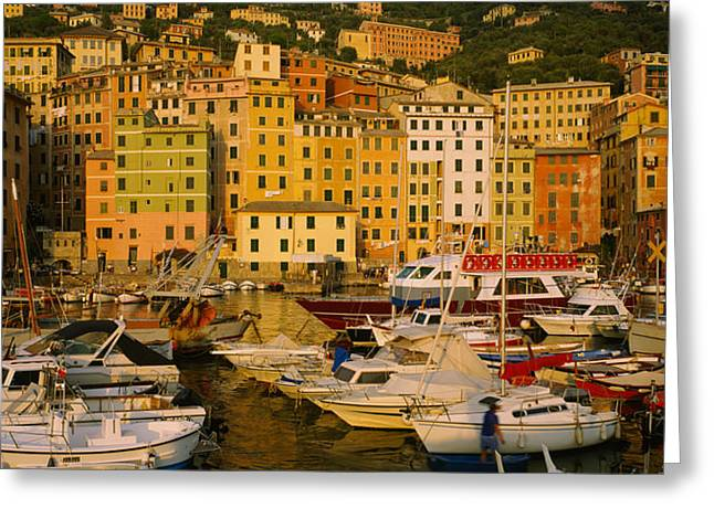 Boats At The Harbor, Camogli, Liguria Greeting Card by Panoramic Images