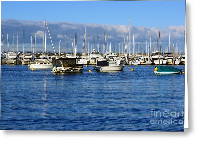 Boats Greeting Card by Cassandra Buckley