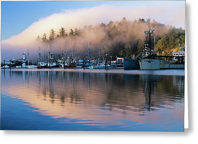 Boats Dock At Winchester Bay  Oregon Greeting Card by Robert L. Potts